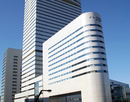 280px-Japanese_Omiya_Sonic_City[1]